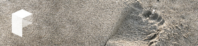 saasquatch-tracks