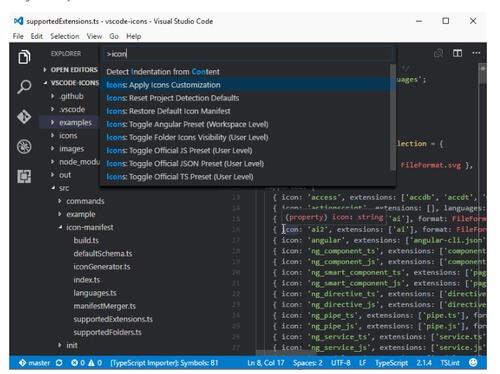 VS Code Icons