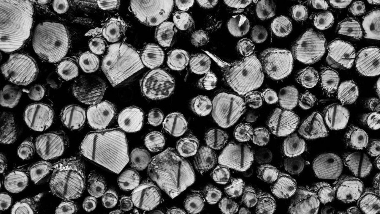 Log Aggregation 101: Methods, Tools, Tutorials & More