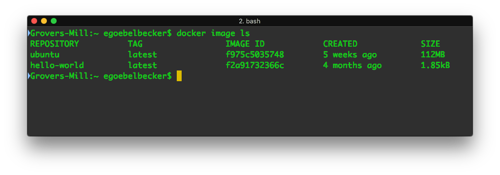 Docker command screenshot