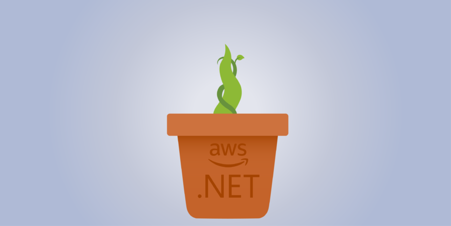 AWS Elastic Beanstalk  NET Core Tutorial: Get Your