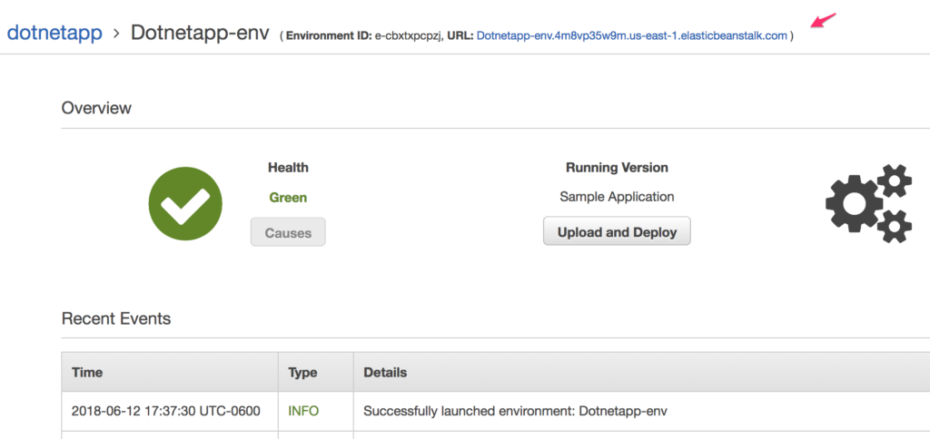 Creating a .NET Application in AWS Beanstalk - Screenshot of dotnetapp environment