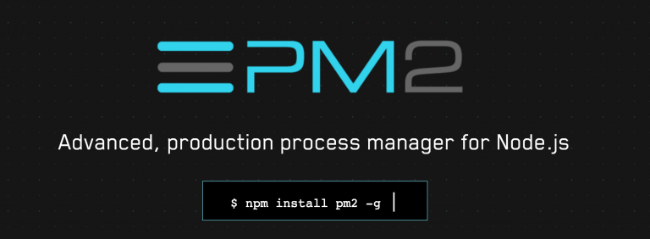 PM2 developer tool