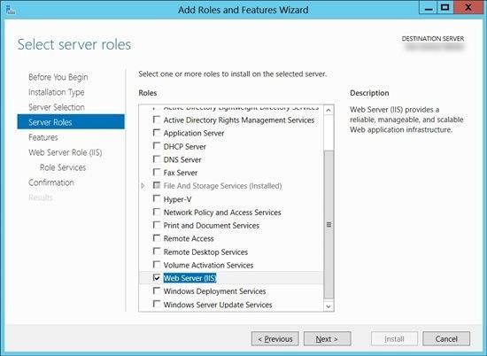 IIS Web Server Roles